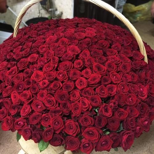 Купить на заказ Заказать 1001 роза с доставкой по Таразу  с доставкой в Таразе