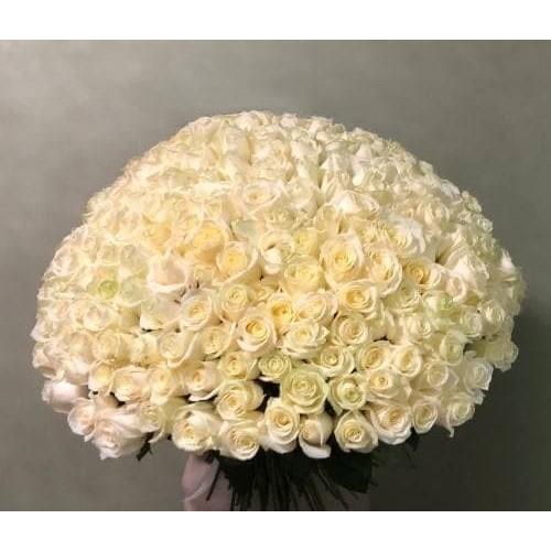 Купить на заказ Заказать 201 роза с доставкой по Таразу  с доставкой в Таразе