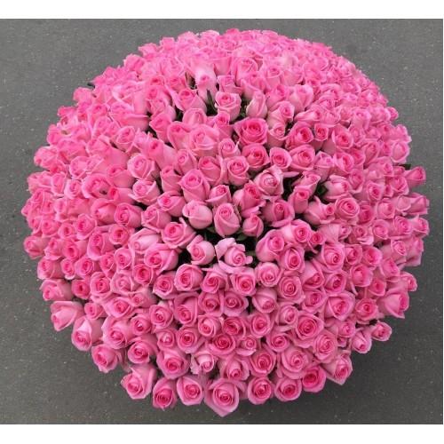 Купить на заказ Заказать 501  роза с доставкой по Таразу  с доставкой в Таразе