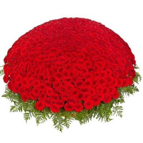 Купить на заказ Заказать 301  роза с доставкой по Таразу  с доставкой в Таразе